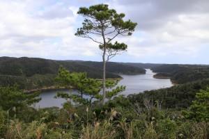 東村の福地ダム